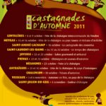 casta2011-affiche.jpg